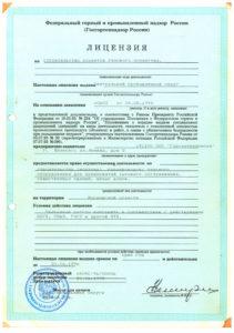 Первая лицензия компании 1995 г.